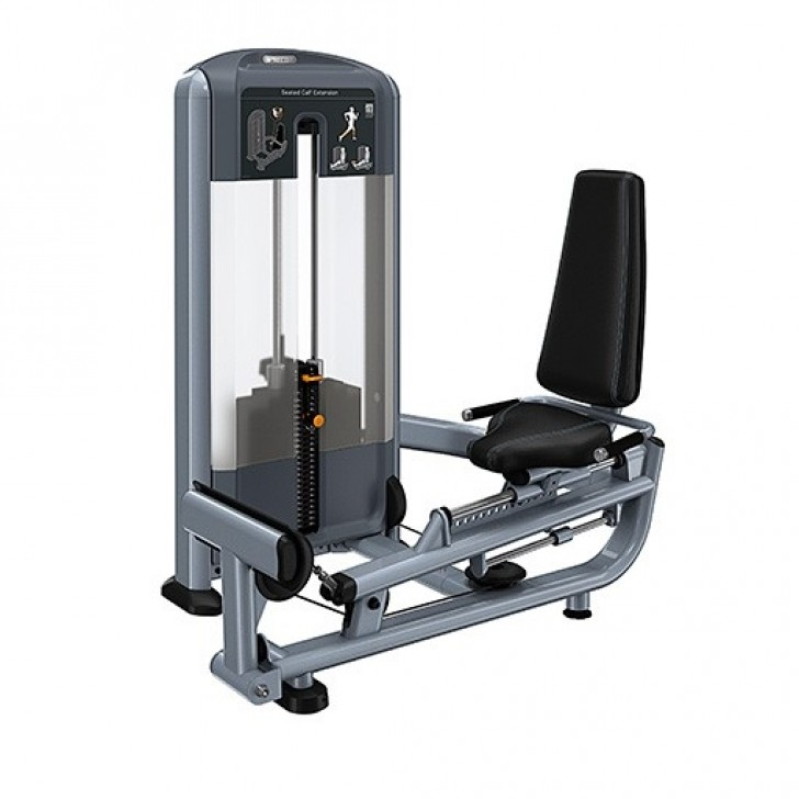 Picture of Seated Calf Extension DSL623