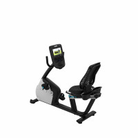 RBK 865 Recumbent Bike
