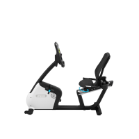 Recumbent Bike RBK 865